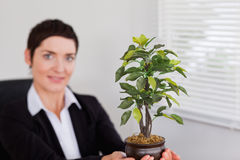 Office worker holding a plant Stock Photo