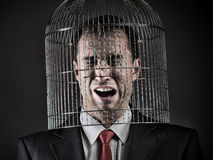 Office worker`s head inside a birdcage. Concept Stock Image