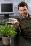 Office worker watering plant Royalty Free Stock Images