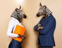 Office workers concept of male and female zebras. Office workers animalistic concept of male and female zebras wearing suits standing together royalty free stock images