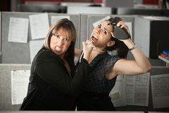 Office Workers Fighting. Two female office workers fight in a cubicle Stock Photo