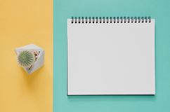 Office workplace minimal concept. Blank notebook, cactus on yell royalty free stock photos