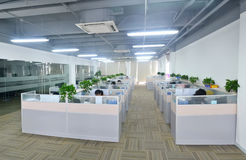 officemates Zdjęcie Stock