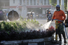 Officers Surakarta local government sanitation departments take care of the city park with a hose with water each morning. Stock Photography