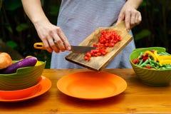 Officina culinaria Insalata di verdure Fotografie Stock