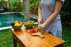 Officina culinaria Insalata di verdure Immagine Stock Libera da Diritti