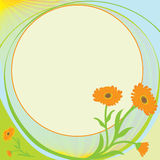 Officinal calendula icon for green pharmacy Royalty Free Stock Image