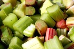 Officinale do Rheum do Rhubarb de China imagens de stock