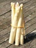 Officinalis dell'asparago Fotografie Stock Libere da Diritti