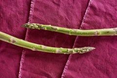 Officinalis lavados e prontos do aspargo orgânico fresco do aspargo Foto de Stock Royalty Free