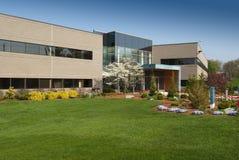 Offive Gebäude im Grün Stockfoto