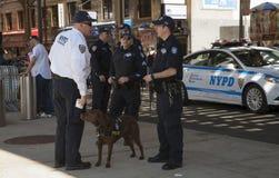 Offiziere des NYPD-Terrorismusbekämpfungs-Büros K-9 sprechen während des Öffnens von d Stockbilder