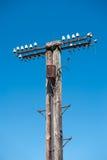 offline Vecchio, palo di telefono obsoleto Fotografia Stock Libera da Diritti