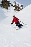 offpist滑雪 免版税库存图片