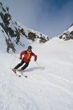Offpist Skifahren Stockbilder