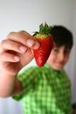 Offre d'une fraise Images stock