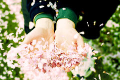 Offre de l'amour Image libre de droits