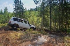 Offroad приключение на Тойота в лесах Karelia стоковые изображения