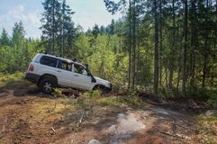 Offroad adventure on Toyota in the forests of Karelia stock images
