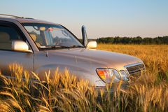 Offroad car on wheaten field Royalty Free Stock Photos