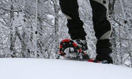 Offroad de winter Stock Afbeelding