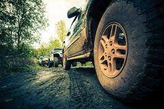 OffRoad Forest Expedition. 4x4 Sport Utility Vehicles in Action Royalty Free Stock Photos