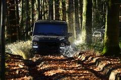 Offroad rasa na spadek natury tle Ekstremum, wyzwanie i 4x4 pojazdu pojęcia Samochodowy ścigać się w jesieni lasowy SUV, lub obraz royalty free