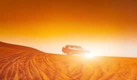 Offroad truck or suv riding dune in arabian desert at sunset. Offroad has been modified to be unrecognized. Offroad truck or suv riding dune in arabian desert Stock Photo
