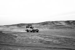 Offroad vehicle driving through sand dunes in desert, Hurghada, royalty free stock image