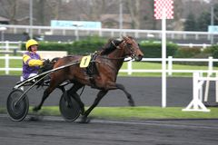 Offshore dream, Prix d'Amérique, Vincennes, 2007 Stock Image