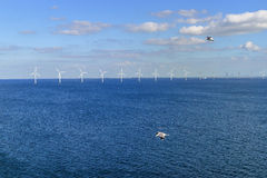 Free Offshore Wind Farm In Baltic Sea Stock Photos - 29632203