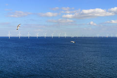Free Offshore Wind Farm In Baltic Sea Royalty Free Stock Photos - 29632218
