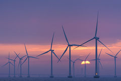Offshore windfarm Lillgrund dawn, Sweden Stock Images