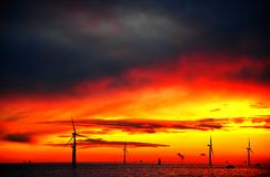 Offshorewindfarm am Sonnenuntergang Lizenzfreies Stockbild