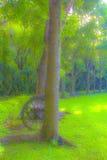 Offusca l'albero Immagini Stock Libere da Diritti