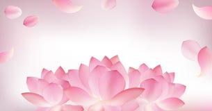 Offuschi il fondo rosa con il petalo rosa di loto illustrazione vettoriale