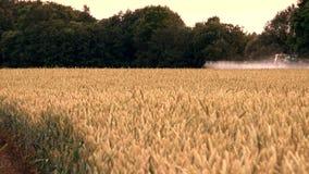 Offuschi il giacimento di grano dello spruzzo del trattore con i prodotti chimici vicino agli alberi forestali archivi video