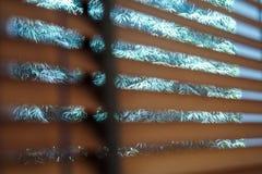 Offuschi la tenda dell'ombra ed il fondo ciechi di legno dell'albero dell'ombra fotografia stock libera da diritti