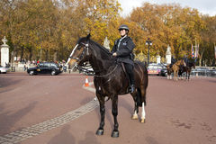 oficer policja Obrazy Royalty Free