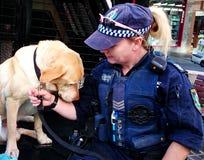 Oficial de policía y perro policía Foto de archivo libre de regalías