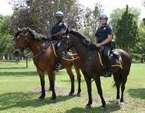 Oficiales de policía de NYPD a caballo listos para proteger el público en Billie Jean King National Tennis Center durante el US Op Imagen de archivo libre de regalías