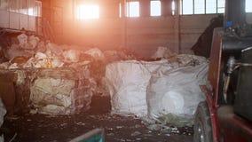Oficina na planta para processar e classificar o lixo, o cartão e o plástico, sol, conservação imagem de stock royalty free