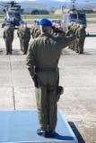 Oficjalny salut obrazy stock