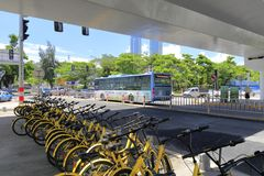 ofo分享了自行车在路桥梁,多孔黏土rgb下 免版税库存照片