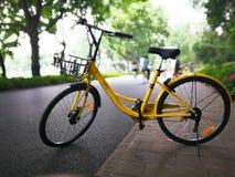 Ofo cykel på vägen Arkivbilder