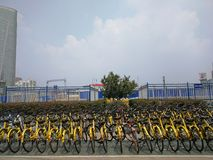 Rows of ofo bikes on the road , wuhan city, china stock photo
