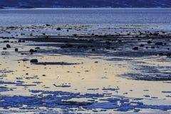 Ofotfjord shoreline. At low tide near Hakvik, Nordland county, Norway Stock Photos