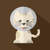 Ofreciendo a Cat Wearing Cat Collar Imagenes de archivo