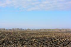 Ogästvänligt fältlandskap för konserverad skörd Arkivbild