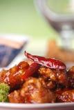 ogólny kurczaka tso s Fotografia Stock